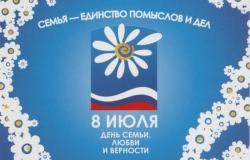 II областной семейный фестиваль «Ромашковое поле»